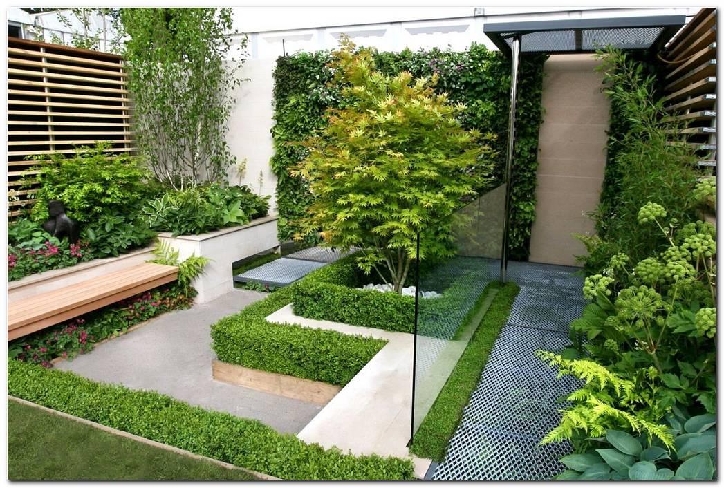 Jardines Minimalistas Con Palmeras