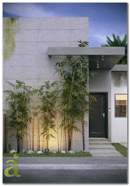 Jardines Residenciales Minimalistas
