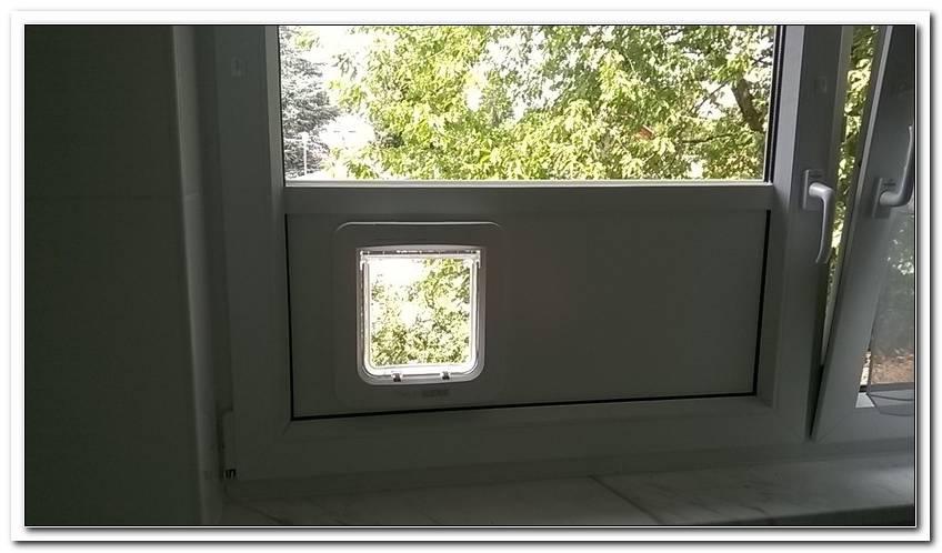 Katzenklappe In Fenster Einbauen