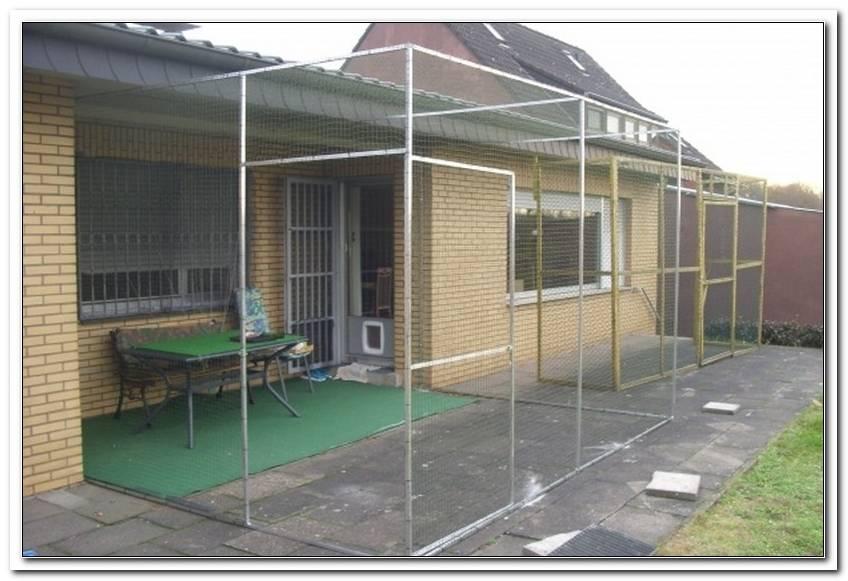 Katzensicherung Terrasse
