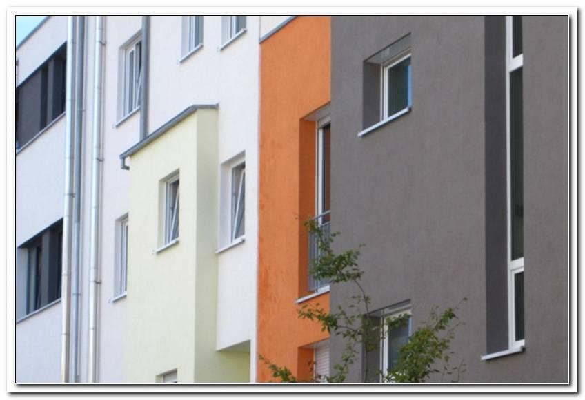 Kfw Neue Fenster Ohne Energieberater