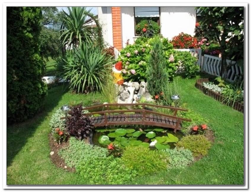 Kleiner Teich Im Garten