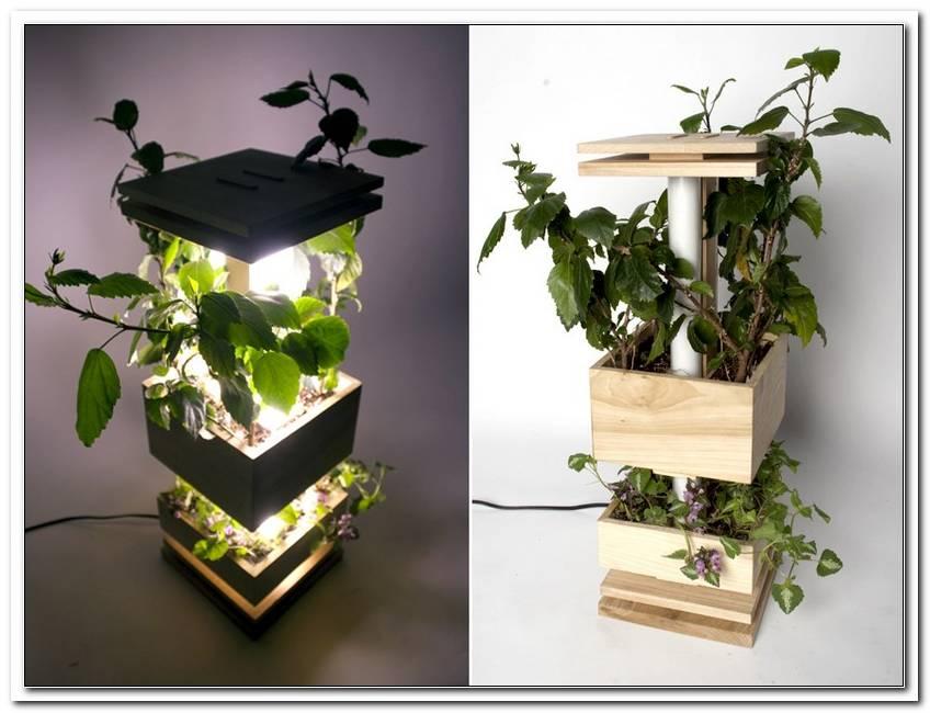 Lampen Voor Planten