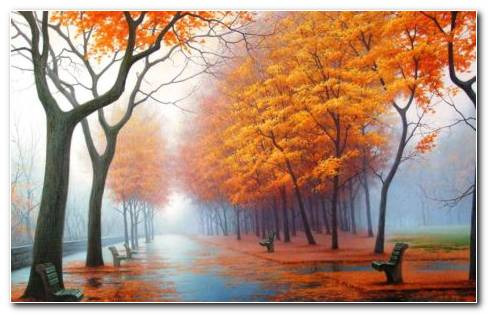 Leaf Fall Autumn HD Wallpaper