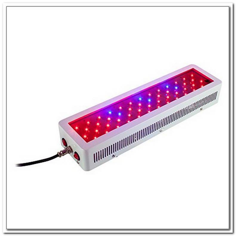 Led Grow Lampe Kaufen