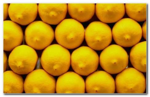 Lemon Fruit HD Wallpaper