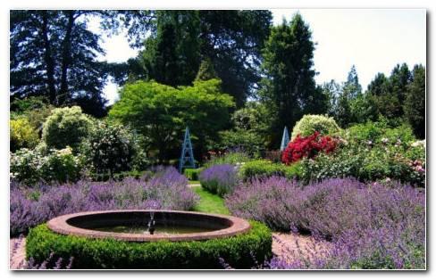 Long garden ideas HD wallpaper