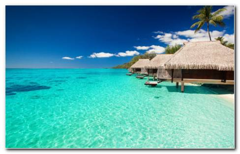 Maldives Tropical Bungalows HD Wallpaper