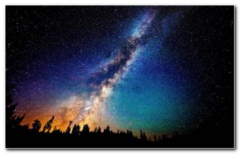 Milky Way Above Fir Forest HD Wallpaper