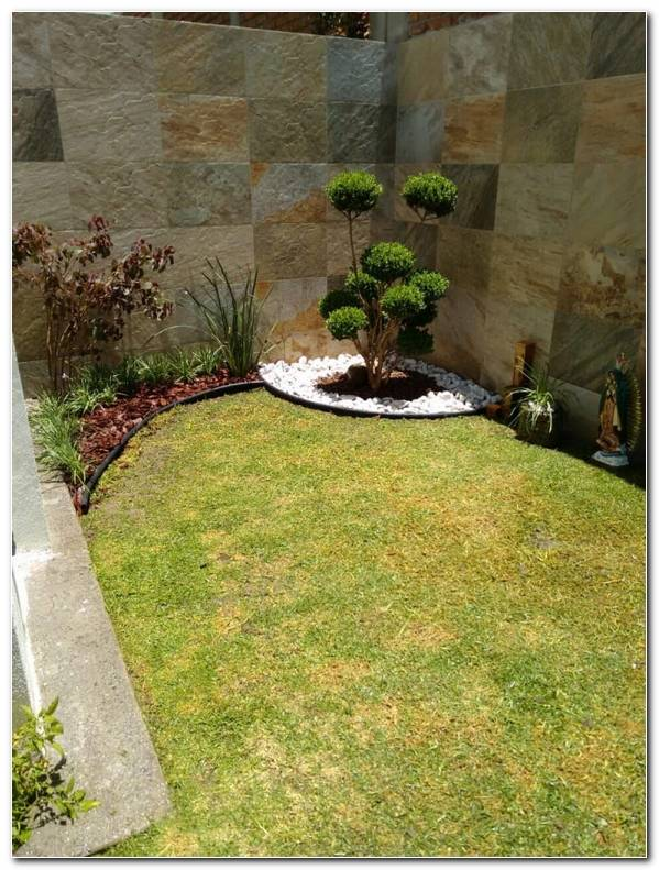 Mini Jardin Minimalista