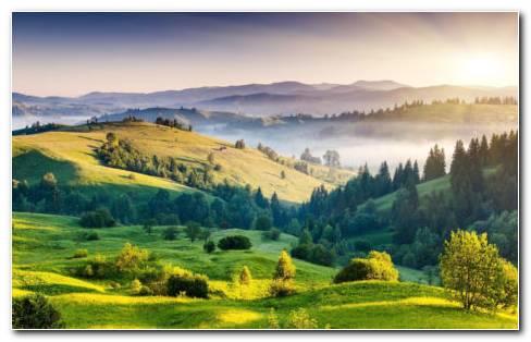 Mountain Full Of Grass HD Wallpaper