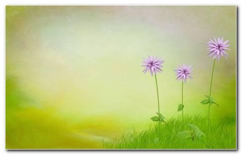 Nature 3d Art Flowers