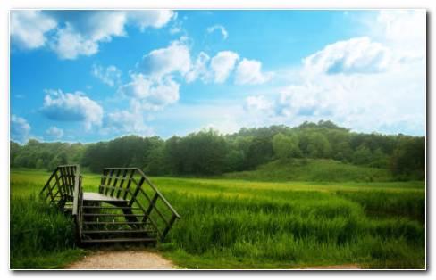 Nature Garden Beauty HD Wallpaper