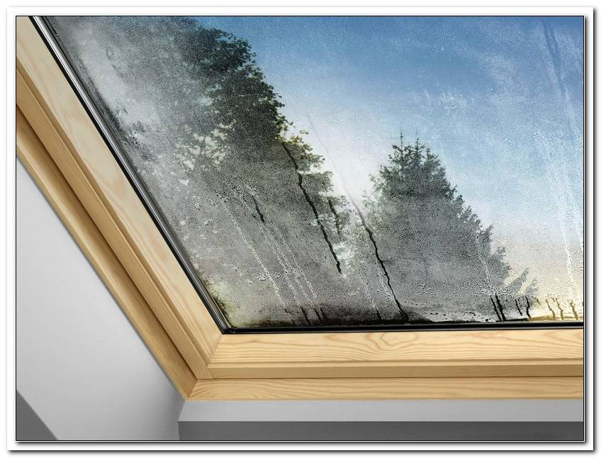Neubau Fenster Schwitzen