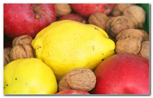 Nut Fruit Or Vegetable HD Wallpaper