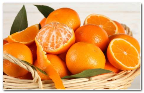 Oranges In Basket HD Wallpaper