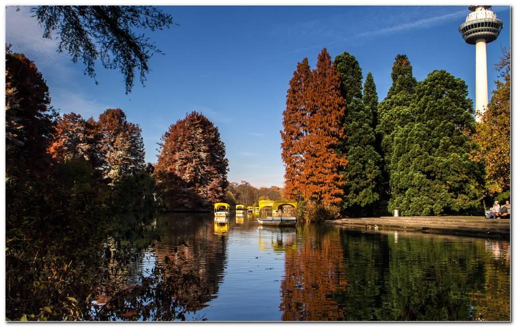 Park Lake Autumn Wallpaper