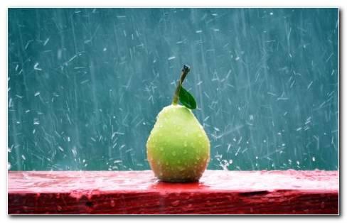 Pear Under Rain