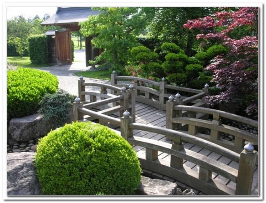 Pflanzen F?R Japanischer Garten