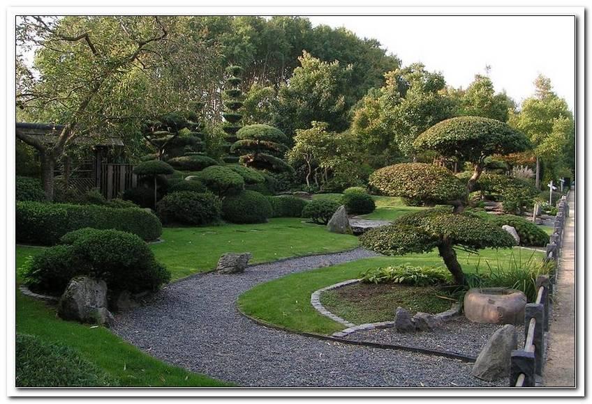 Pflanzen GehRen Japanischen Garten Copy