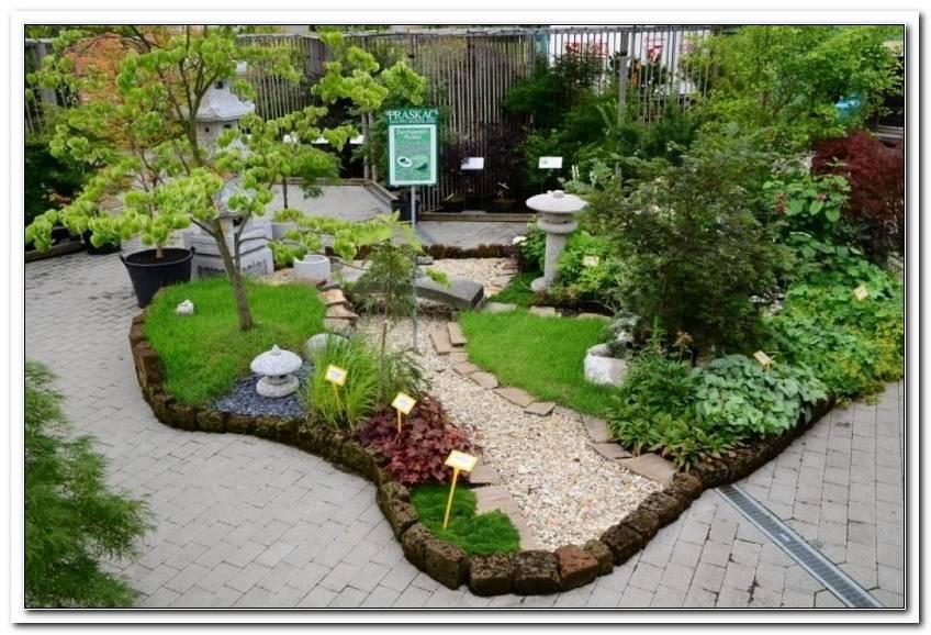 Pflanzen Japanischer Garten Anlegen   Copy