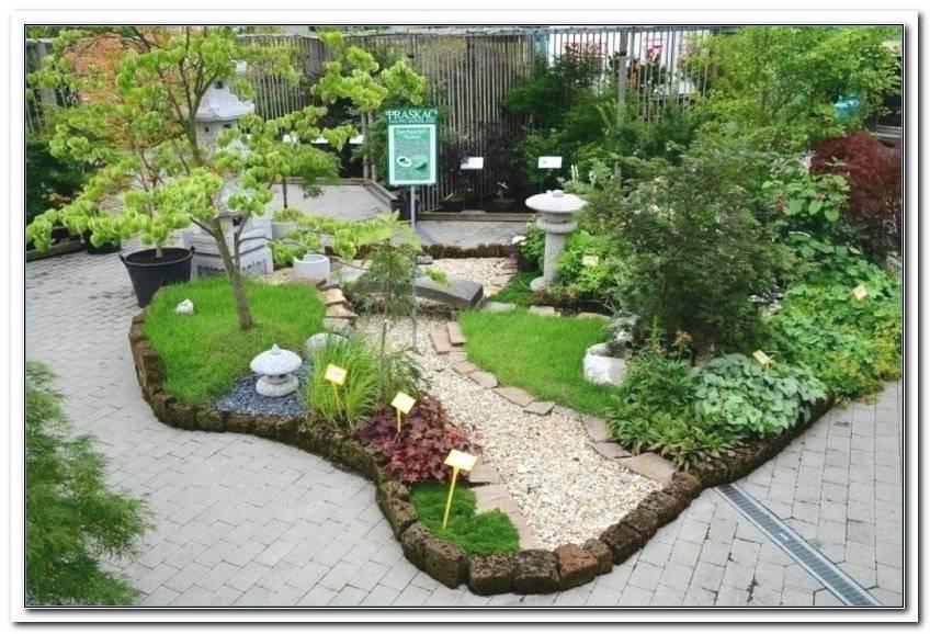 Pflanzen Japanischer Garten Kaufen   Copy