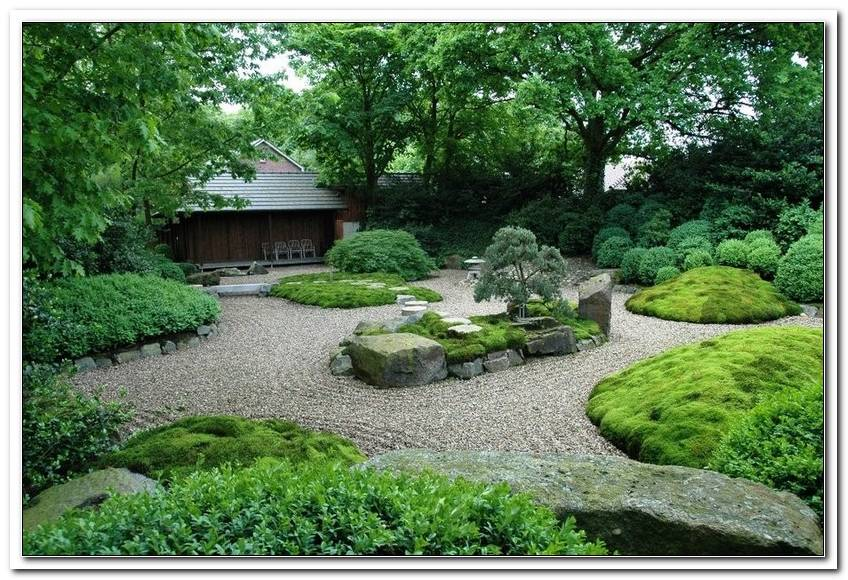 Pflanzen Japanischer Garten