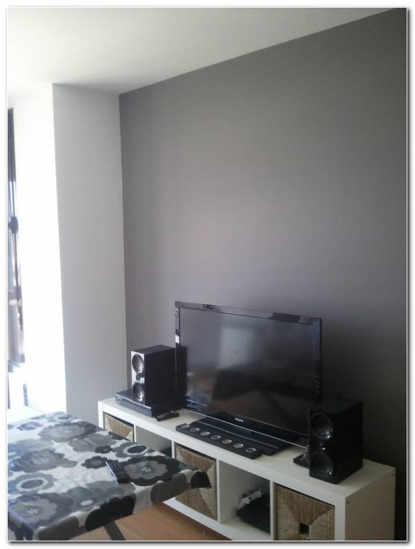 Pinturas Interiores Color Gris