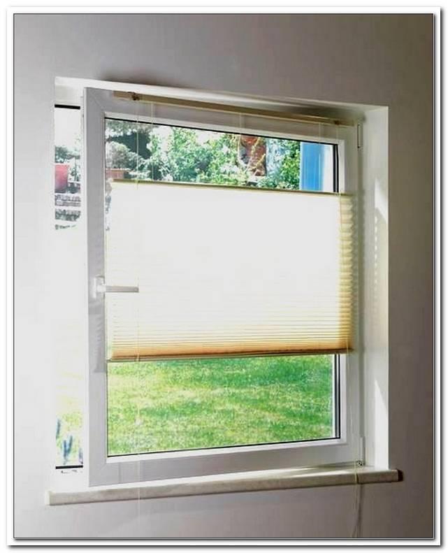 Plissee Fenster Putzen