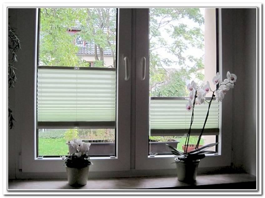Plissee Rollos Fenster