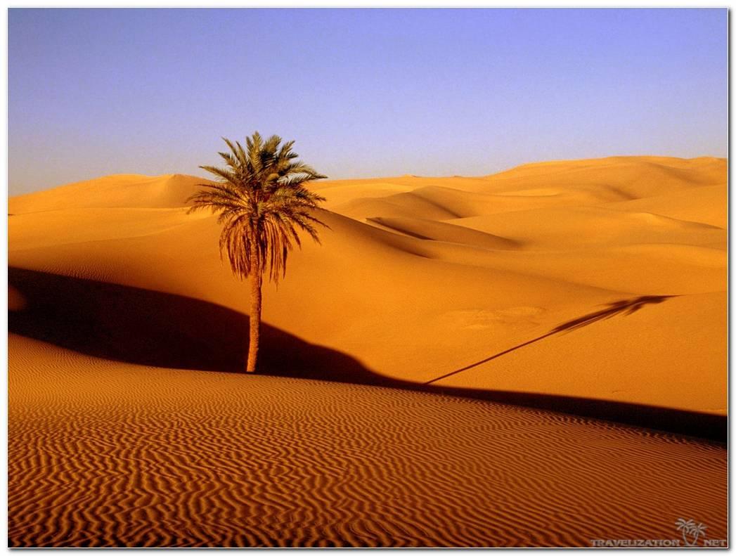 Popular Desert Nature Wallpaper Background Best