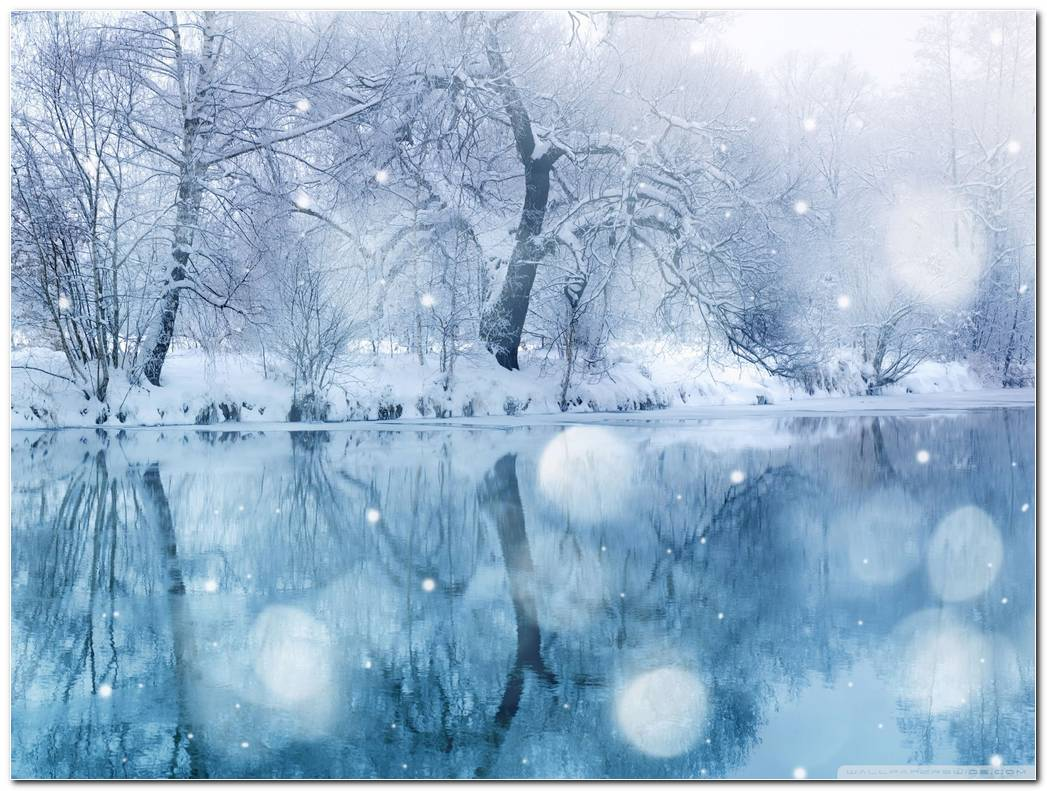 Popular Winter Snow Nature Wallpaper Background Image