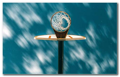 Portable Basketball Hoop HD Wallpaper