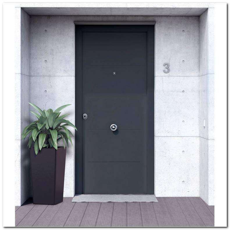 Puertas Metalicas Para Exteriores
