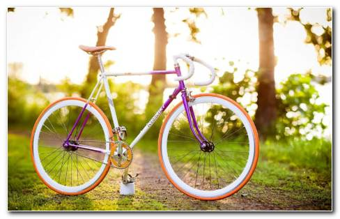 Purple Bicycle HD Wallpaper