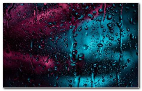 Rain drops HD wallpaper