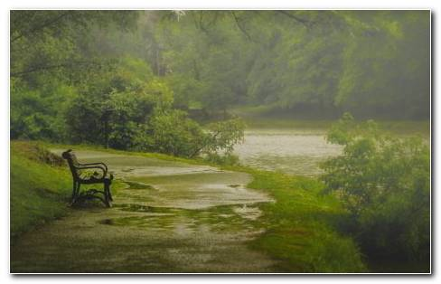 Rain In The Park HD Wallpaper