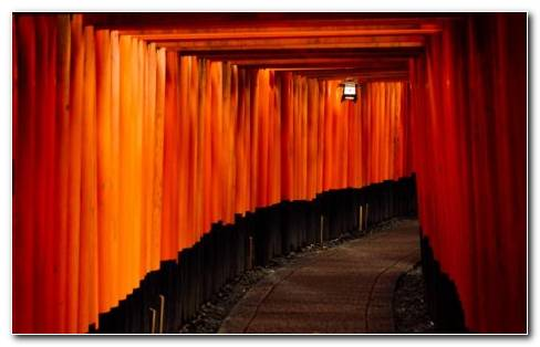 Red Corridor With Orange Lights