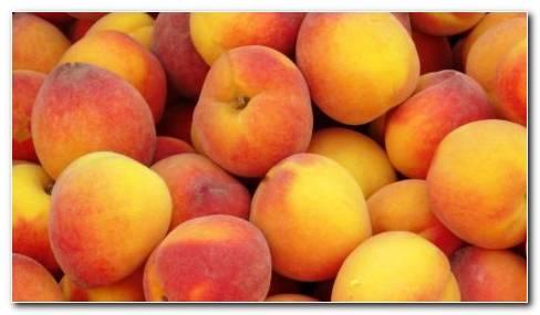 Red Peaches HD wallpaper