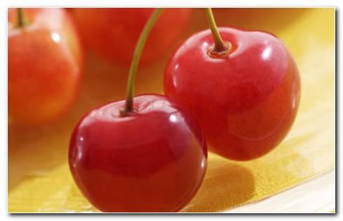 Red Juicy Cherries HD Wallpaper