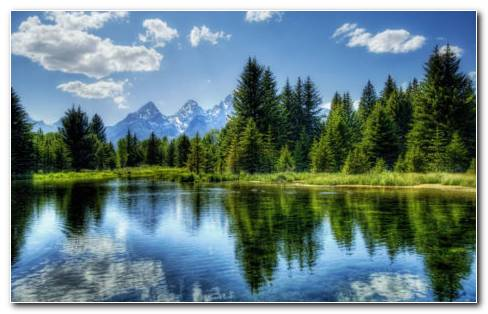 Reflections of nature HD wallpaper