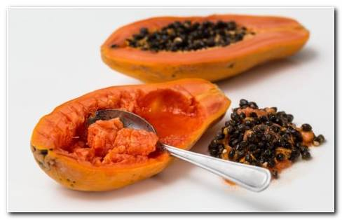 Ripe papaya HD wallpaper