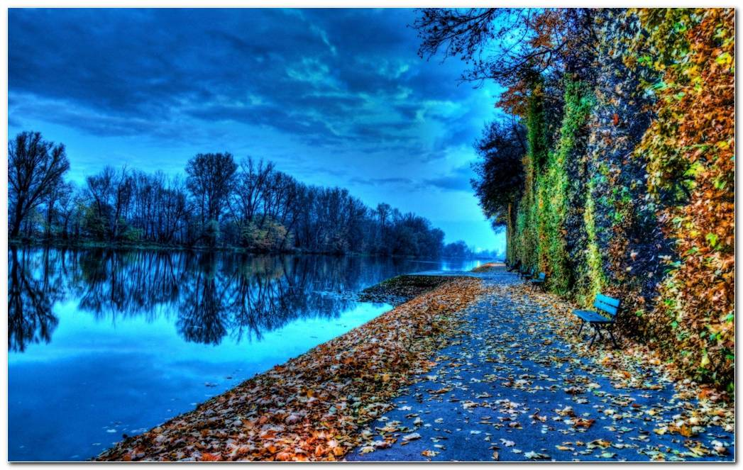 Riverside Bench During Autumn Nature Wallpaper
