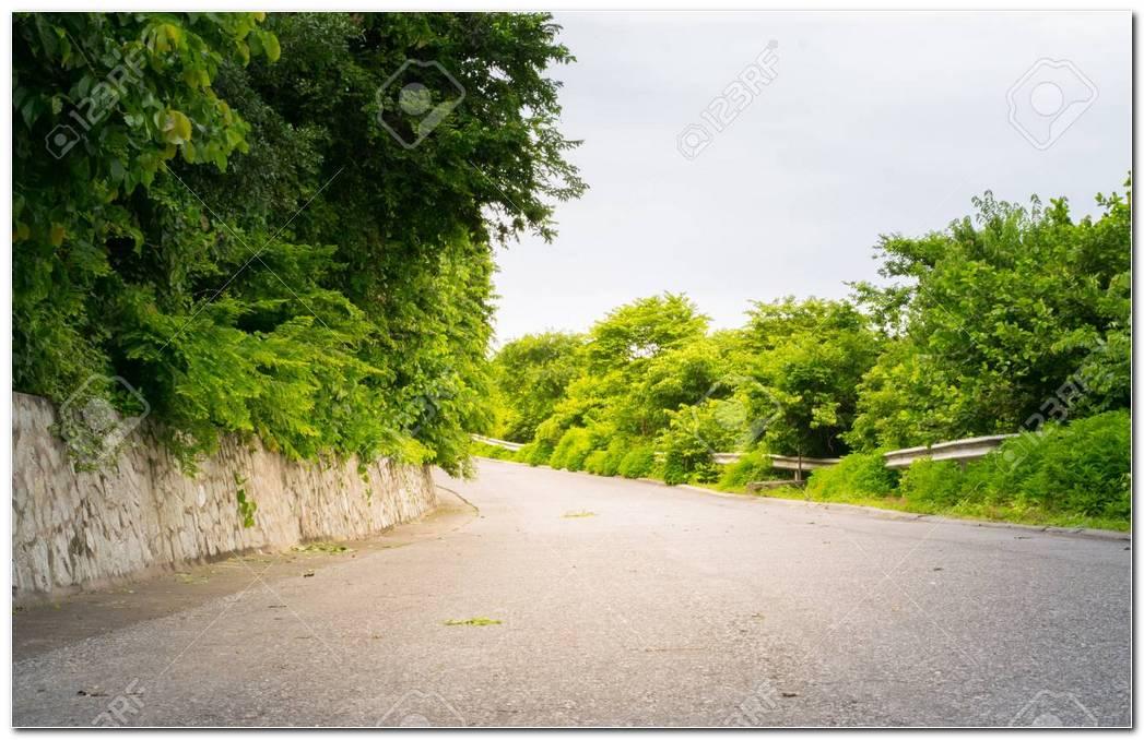Roadside Background
