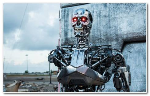 Robot T 800 HD Wallpaper