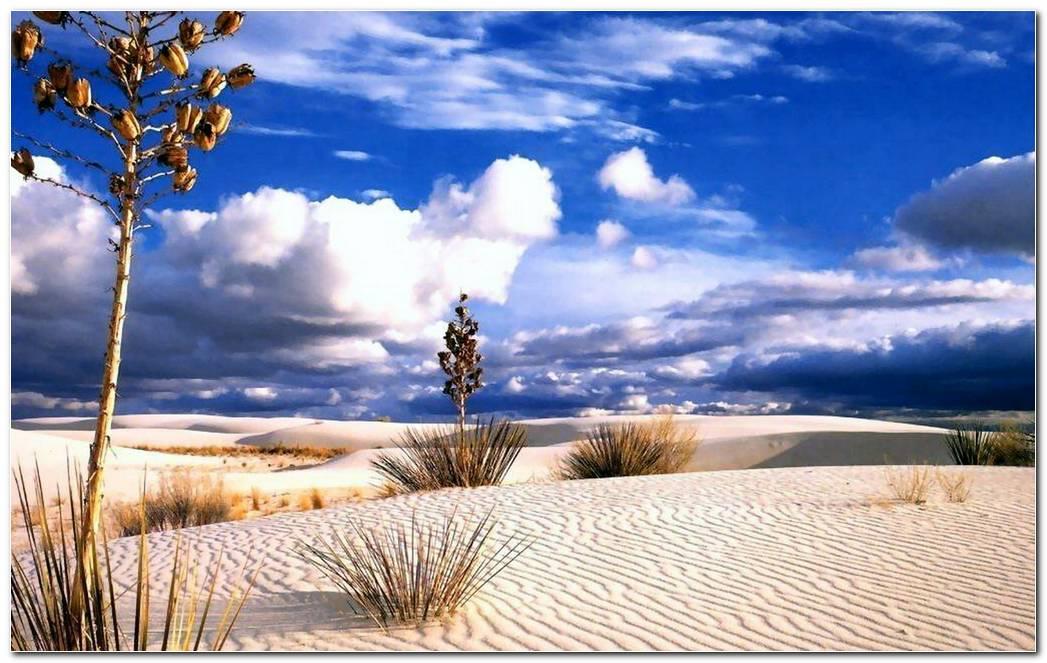 Scenery Desert Nature Wallpaper Background