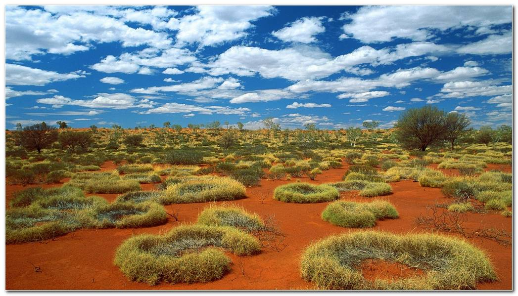 Scenery Desktop Desert Nature Wallpaper Background