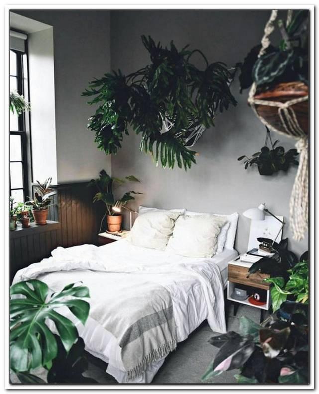 Schlafzimmer Jungle