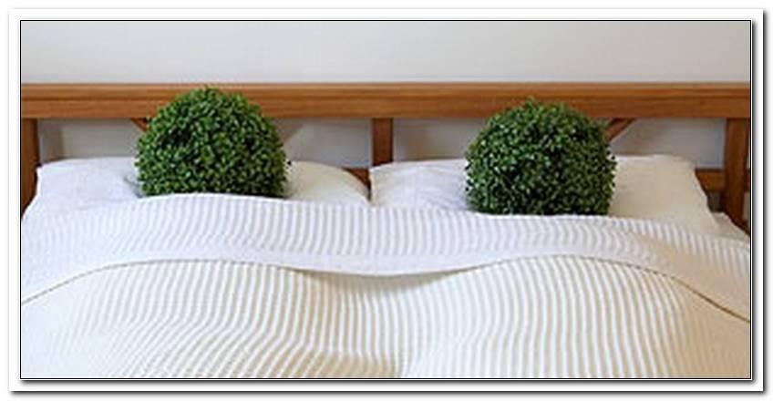 Schlafzimmer Luft Verbessern
