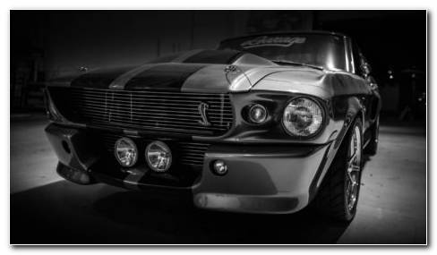 Shelby GT500 HD Wallpaper